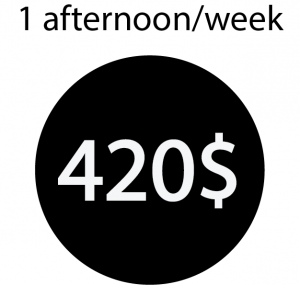 Trybe afternoons once a week 420$